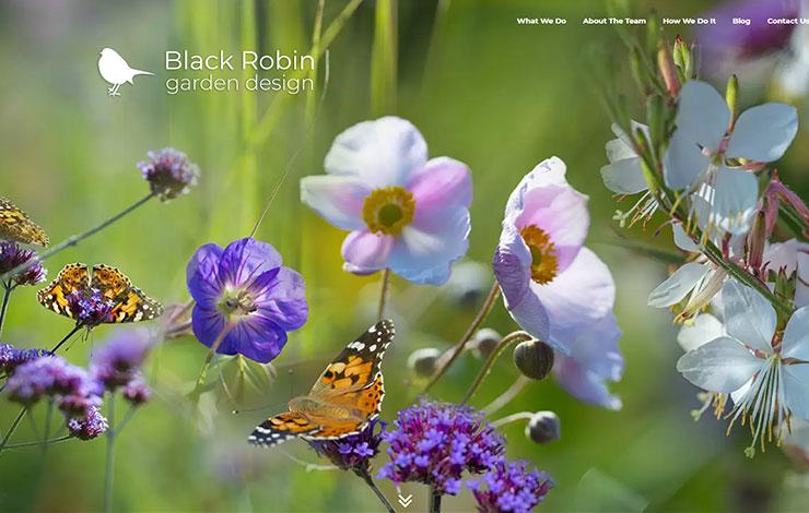 Garden Design North London | Black Robin Garden Design
