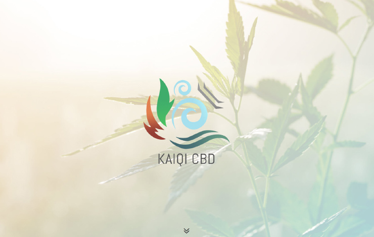 Website Design for KaiQi CBD Oil UK | Reduce Pain, Stress and Anxiety