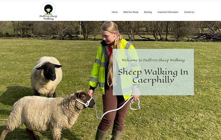 Duffryn Sheep Walking | Sheep walking in Caerphilly, Wales