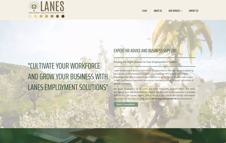 Website Design for Expert HR Advice | Lanes Employment Solution Specialists