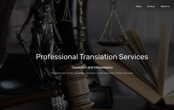 Professional Translation Services | Language Excel