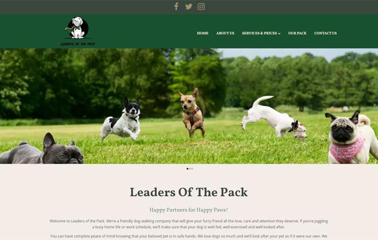 Leaders Of The Pack   Dog Walker Worthing