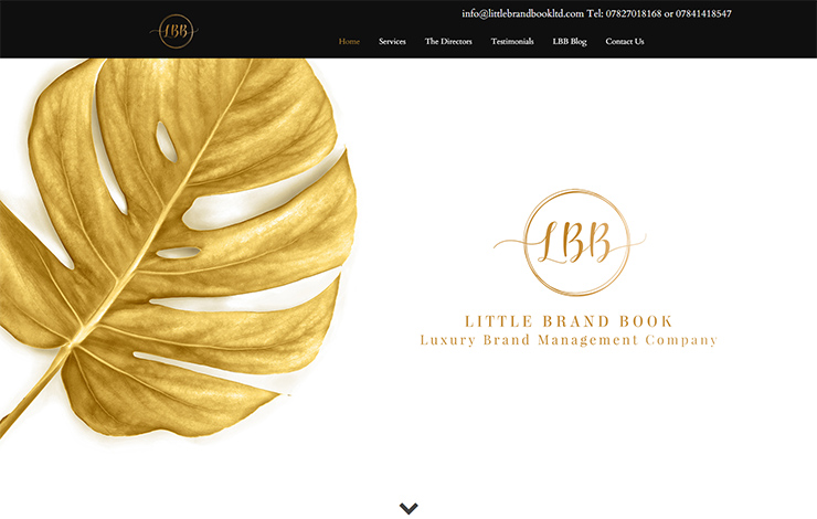 Website Design for Beauty Brand Consultants | Little Brand Book