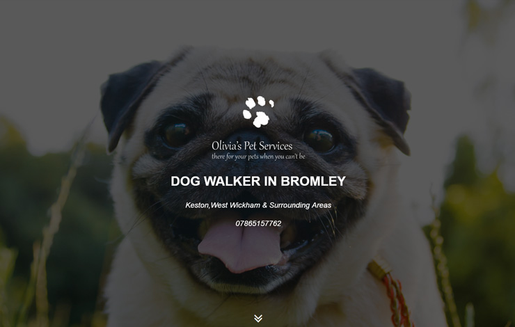 Website Design for Dog Walker in Bromley | Olivia's Pet Services