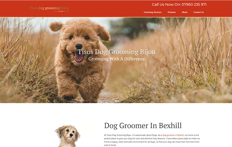 Dog Groomer in Bexhill | Tisos Dog Grooming