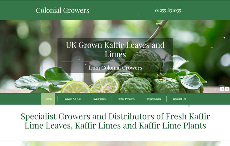 Website Design for UK Growers and Distributors of Fresh Kaffir Lime Plants