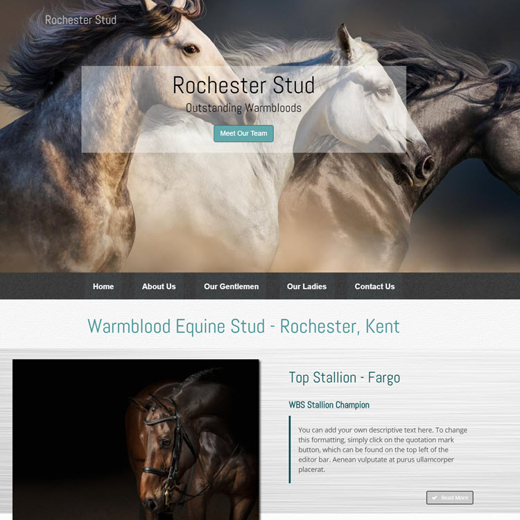 UK Website builder templete Rochester Stud