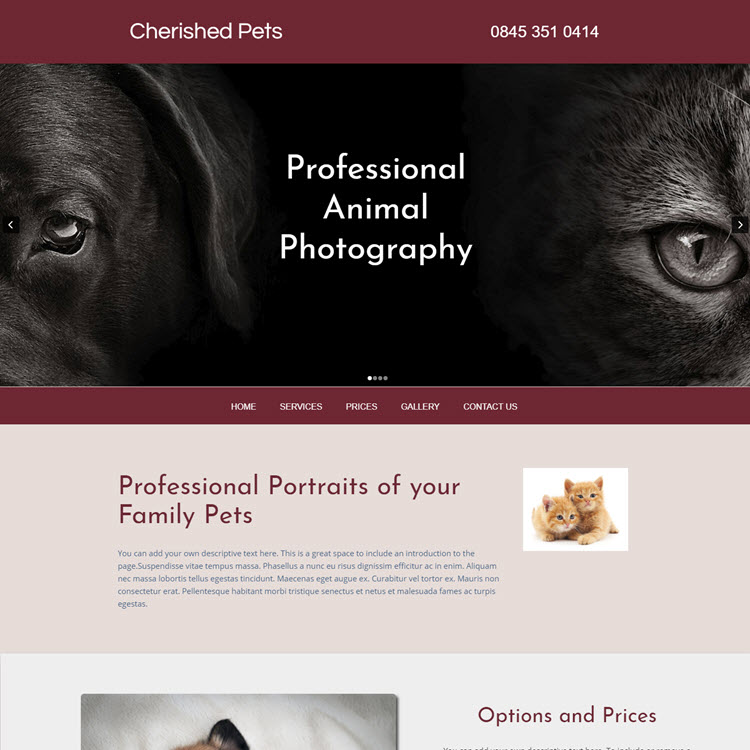 UK Website builder templete Family Pets Photography