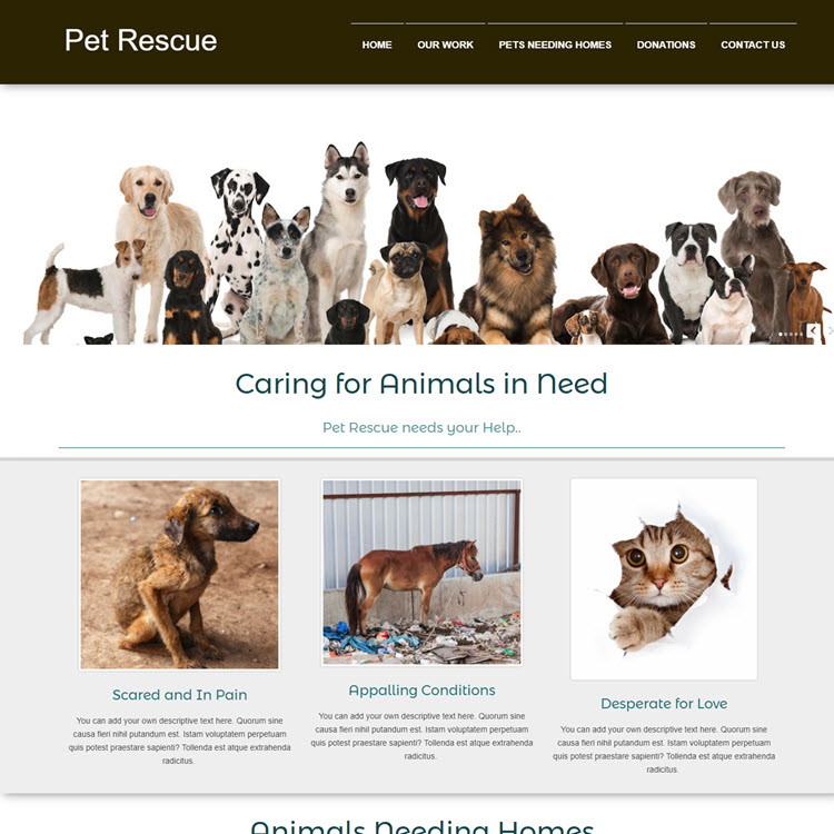 UK Website builder templete Pet Rescue