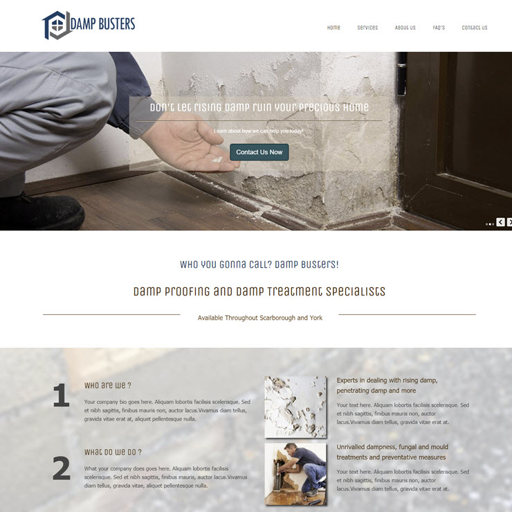 UK Website builder templete Damp Busters