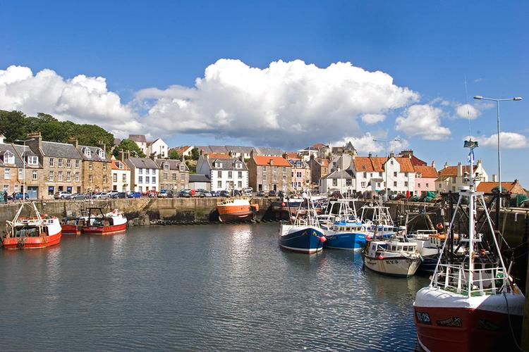 The fishing fleet is in at Pittenweem harbour. Pittenweem harbour full of fishing boats.