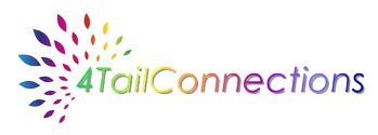 4TailConnections Website Design