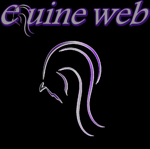 Equine Web Design Services Website Design and Social Media Services