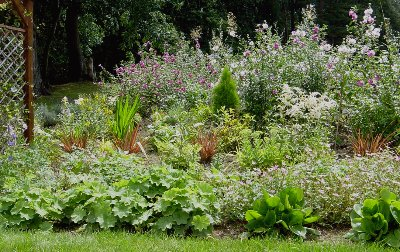 Flowerbed mid-summer