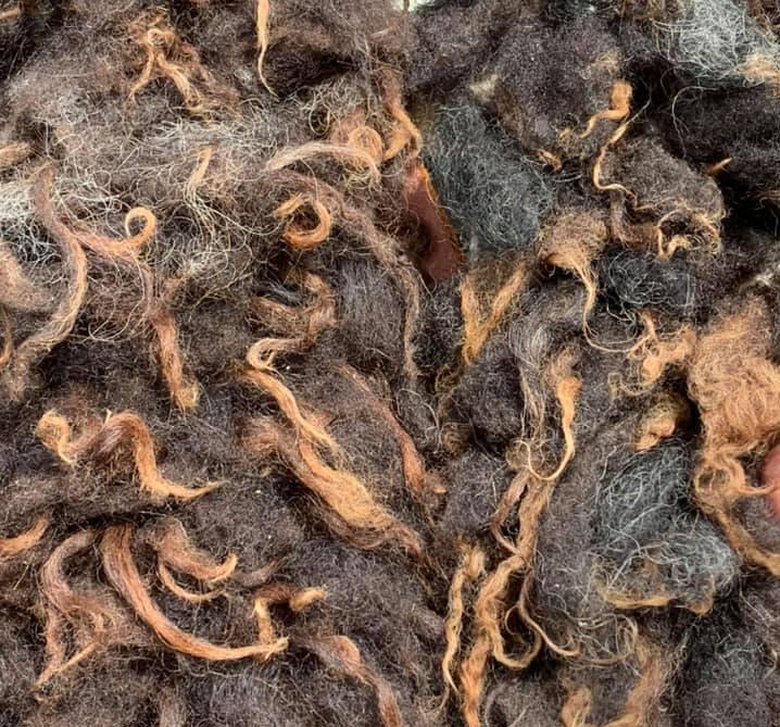 2 x Washed Hebridean Fleece + Euro p&p