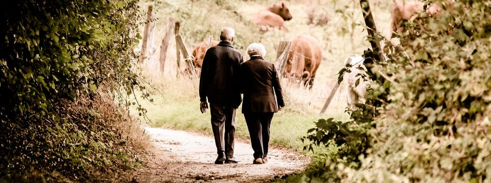 Increase in Power of Attorney use In this article Rose & Trust of Bristol look at the increase in use of Lasting Power of Attorney and potential problems with their use
