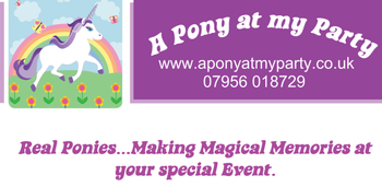 A pony at my party - unicorn hire Unicorn hire London Essex