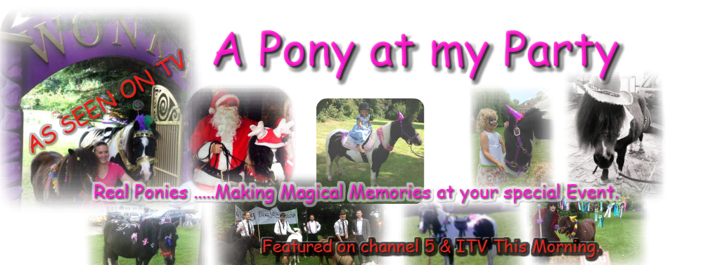 Pony party Essex London hire a pony hire a reindeer Christmas reindeer Christmas pony princess pony