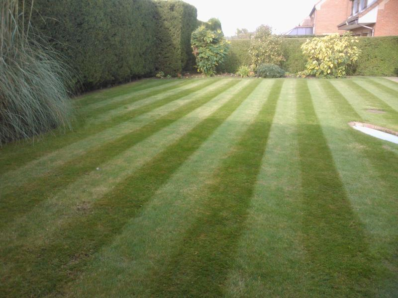 GardenmaintenanceinLincolnshire