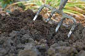 Gardenwasteremovedandcomposted