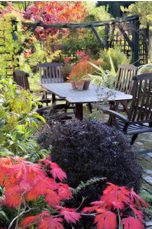 Garden Design open gardens garden centre plant nursey tea