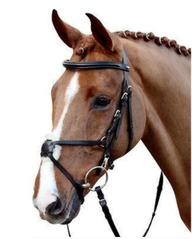 HKM Black Bridle Mexican Style