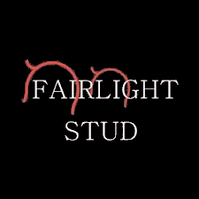 Fairlight Stud Quality Sports Horses and Ponies Sports Horse Stud Somerset UK