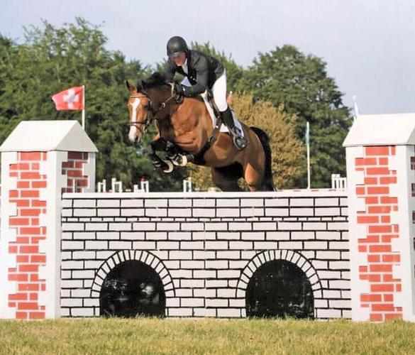Victory for Twinkle Toes HK in the Foxhunter today at Arena UKs Festival Adam Botham steered Twinkle Toes HK to victory in the Foxhunter today, with seventy five starters