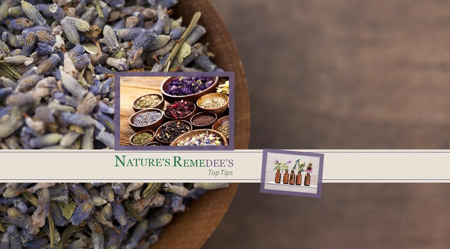 Keep up with our latest top tips and advice on herbal remedies and alternative therapies.
