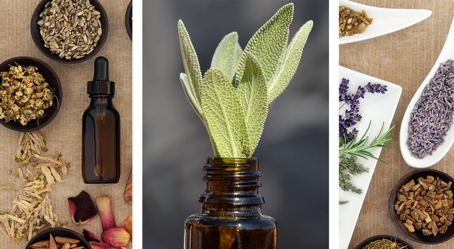 Coming Soon Keep an eye on this space for our new top tips blog on herbal remedies.