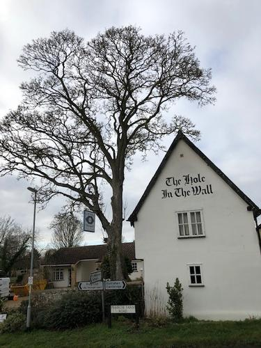 Grand Opening of The Hole in The Wall 2019 The Hole in The Wall of Little Wilbraham, Cambridge is officially opening her doors to the public again. Come visit us to get a taste of award winning, gastro pub quality food and hand picked ales, beers and wines!