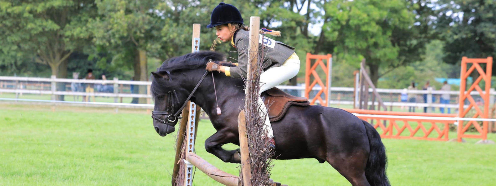 Pony Tack Saddle Pad Specialist Of In Hand And Ridden Show Tack And Pony Schooling Equipment