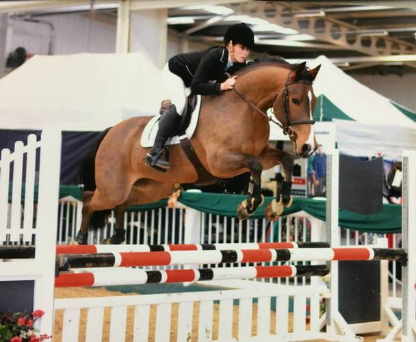 Producing Top Class Show Jumpers and Sport Horses