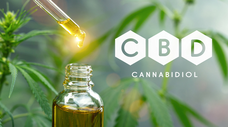Whats the difference between Hemp and CBD and which do I need? Anxiety, Sleep, Infection, Heart, Cancer, Diabetes, Epilepsy, Schizophrenia.....