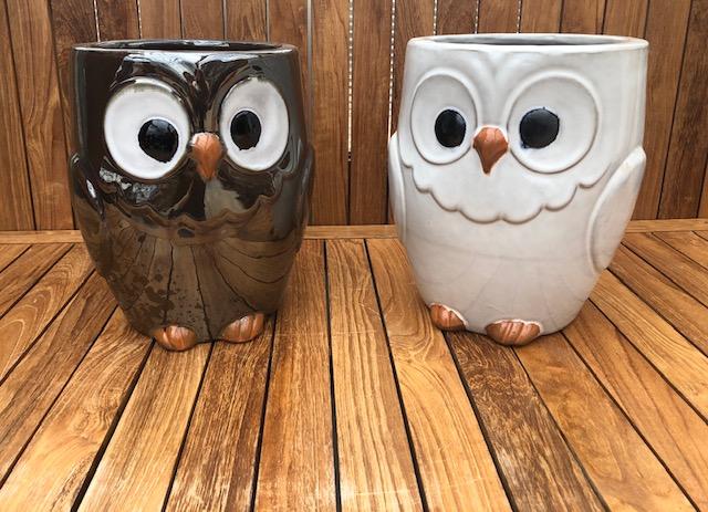 Owl Pot Metallic