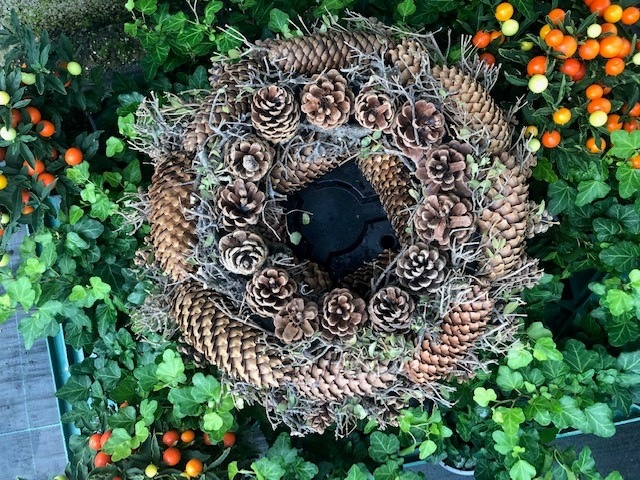PINECONE WREATH  NATURAL