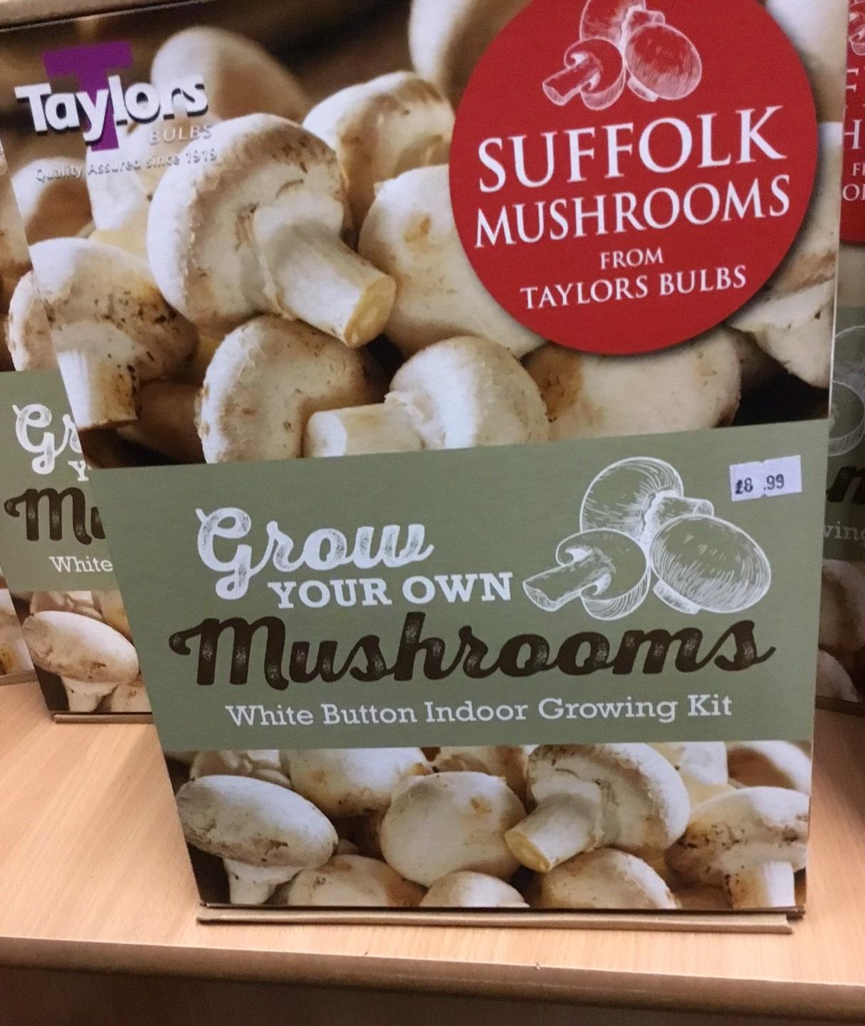 Mushroom Kit Large