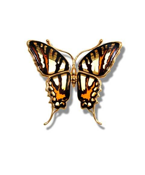 Old World Swallowtail butterfly brooch in multicolour amber- 40x55mm