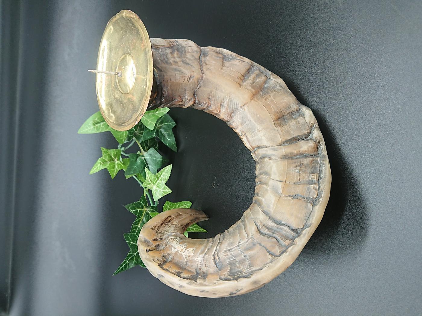 Ram Horn Candle Holder