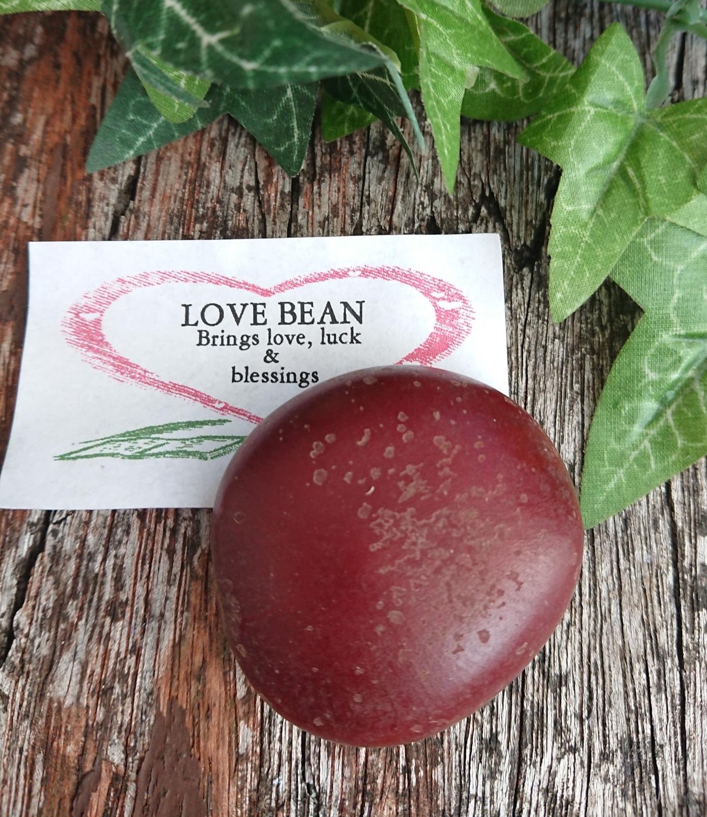 Love Bean