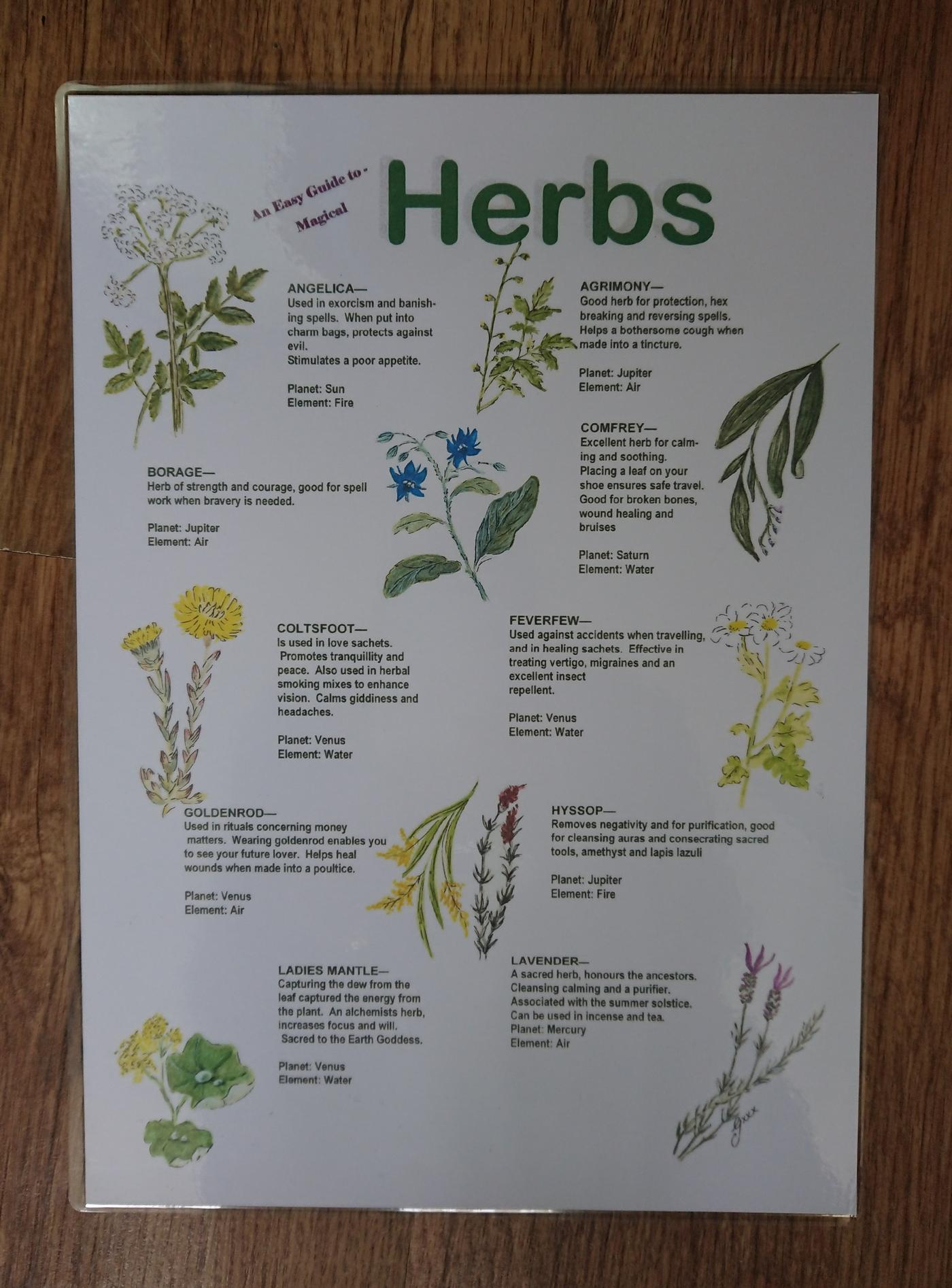 Easy Guide to Magical Herbs Poster