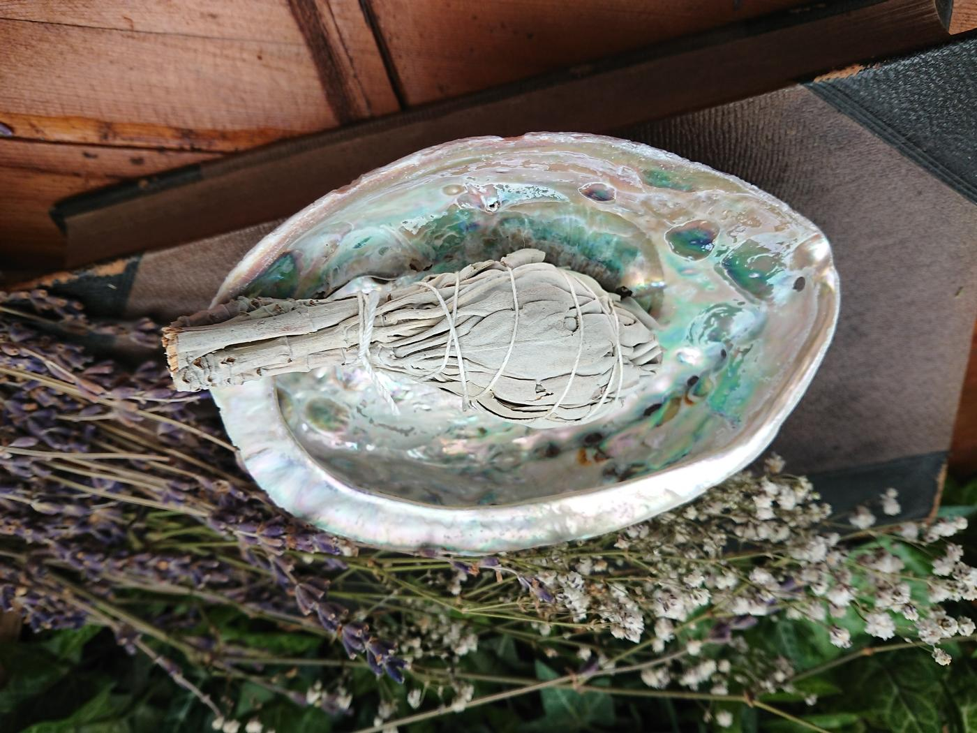Abalone Smudging Kit