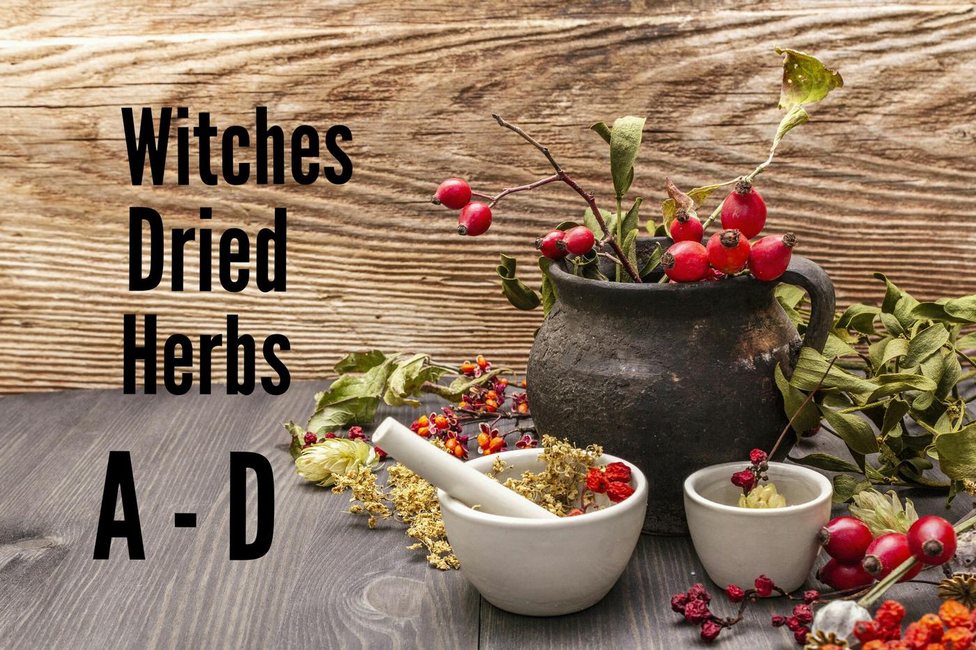 Witches Herbs   A - D