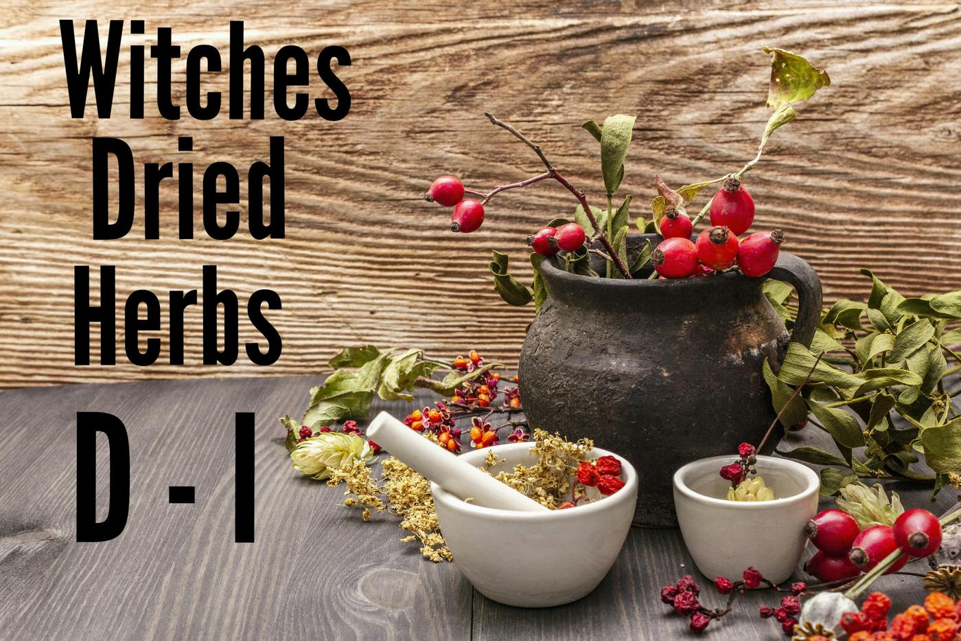Witches Dried Herbs D - I
