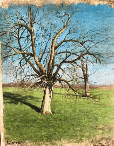 Ancient Orchard The painting of an old apple tree in an ancient orchard. The thought came to me to paint this tree in each season.