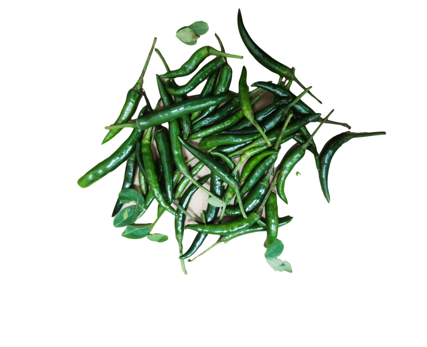 Fresh Green Chilliies