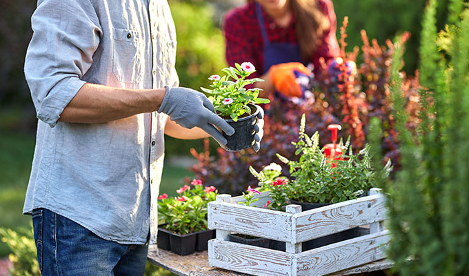 Gardening We stock a diverse inventory of gardening equipment to help our customers create the garden of their dreams.