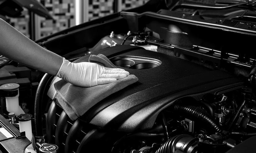 Engine Bay Detail This service is for you, if your engine bay contains debris, is heavily greased, and oil marks and would like to restore it to pristine looking condition.