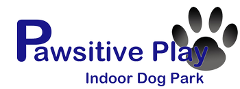 Pawsitive Play Ltd Indoor Dog Park Glasgow Scotland