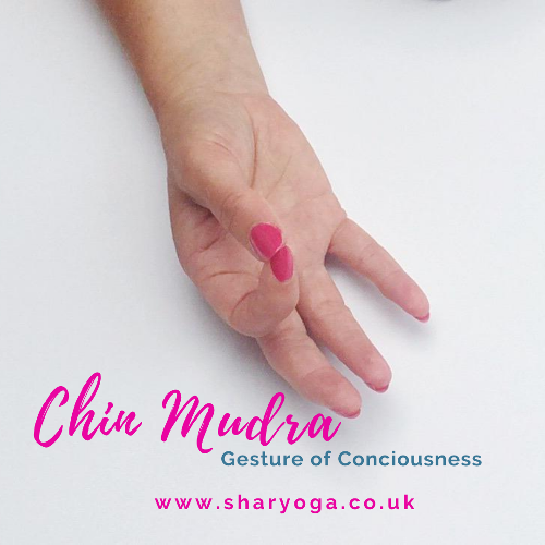 Chin Mudra Chin mudra is a widely used yoga mudra. Typically used during meditation. Bringing about a sense of peace!